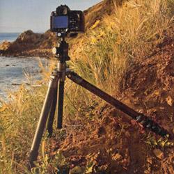 IMAGE: http://www.adorama.com/Artworks2/flashpntArtcl1.jpg