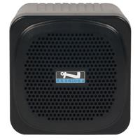Anchor Audio AN-MINIU2 30W Personal Portable PA System with Built-In Dual Wireless Mic Receiver, Black