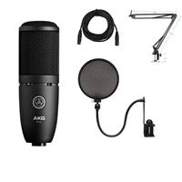 Image of AKG Acoustics Project Studio P120 Medium Diaphragm Cardioid Condenser Microphone, 20Hz-20kHz Frequency Response, Black - Bundle With Technical ARM1 Microphone Suspension Crane Arm, Nady SPF-1 Microph one Pop Filter, 25' XLR M to XLR F Mic Cable