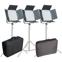 Came-TV High CRI Bi-Color 3X1024 LED Video Studio Lighting