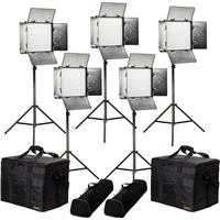 Image of Ikan Rayden Bi-Color 5-Point LED Light Kit, Includes 5x RB10 LED Light, 5x HD Light Stand, 5x Neutral Diffusion Panel, 5x Barn Door with Intensifier, 5x Gold Mount Battery Plate, 5x V-Mount Battery Plate, 5x Power Supply with Cable, 5x Remote Control, 5x