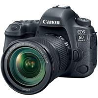 Canon EOS 6D Mark II DSLR with EF 24-105mm f/3.5-5.6 IS STM Lens
