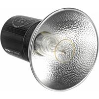 Lumedyne Next Generation Series 800ws UV Flash Head with a Straight 5' Head Cable Product image - 2059