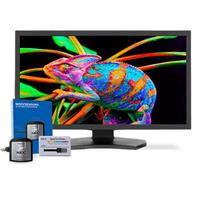 """Image of NEC MultiSync PA311D 31"""" 17:9 Color Critical IPS Desktop Display with SpectraView Engine and SpectraViewII Color Calibration, Black"""