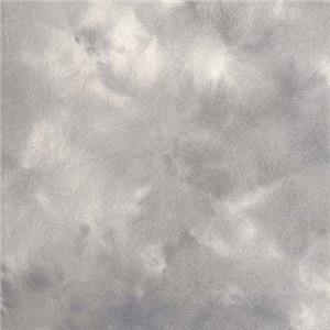 Superb Illuminator Collapsible Disc Background, 6' x 7', Storm Clouds. Product photo