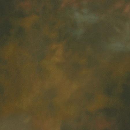 Westcott Illuminator Collapsible Disc BackgroundBracken 178 - 35