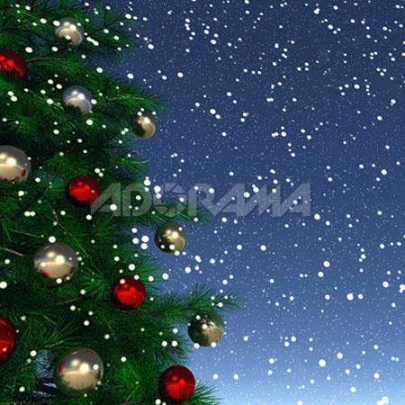 Westcott Photo BasicsSnowfall Christmas Tree Snow Scenic Cotton Muslin Background  183 - 525