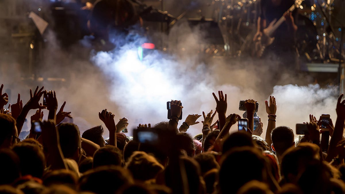 Taking on the Challenge of Concert Photography: What You ... |Concert Photography