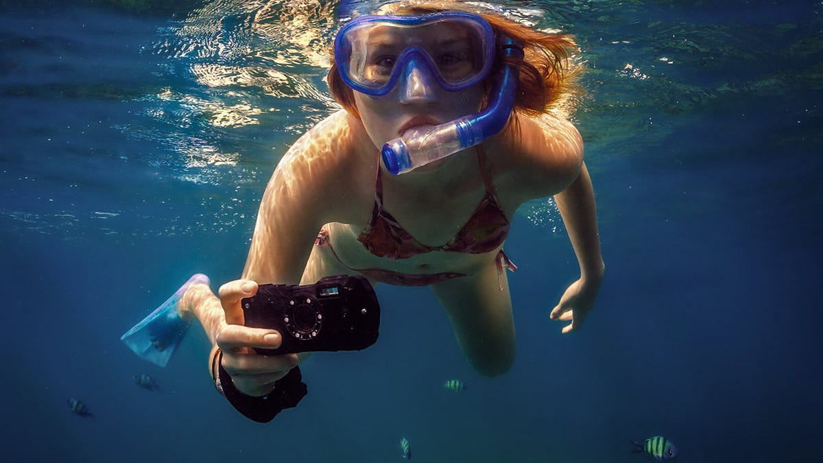 16 Compact Underwater Cameras Compared