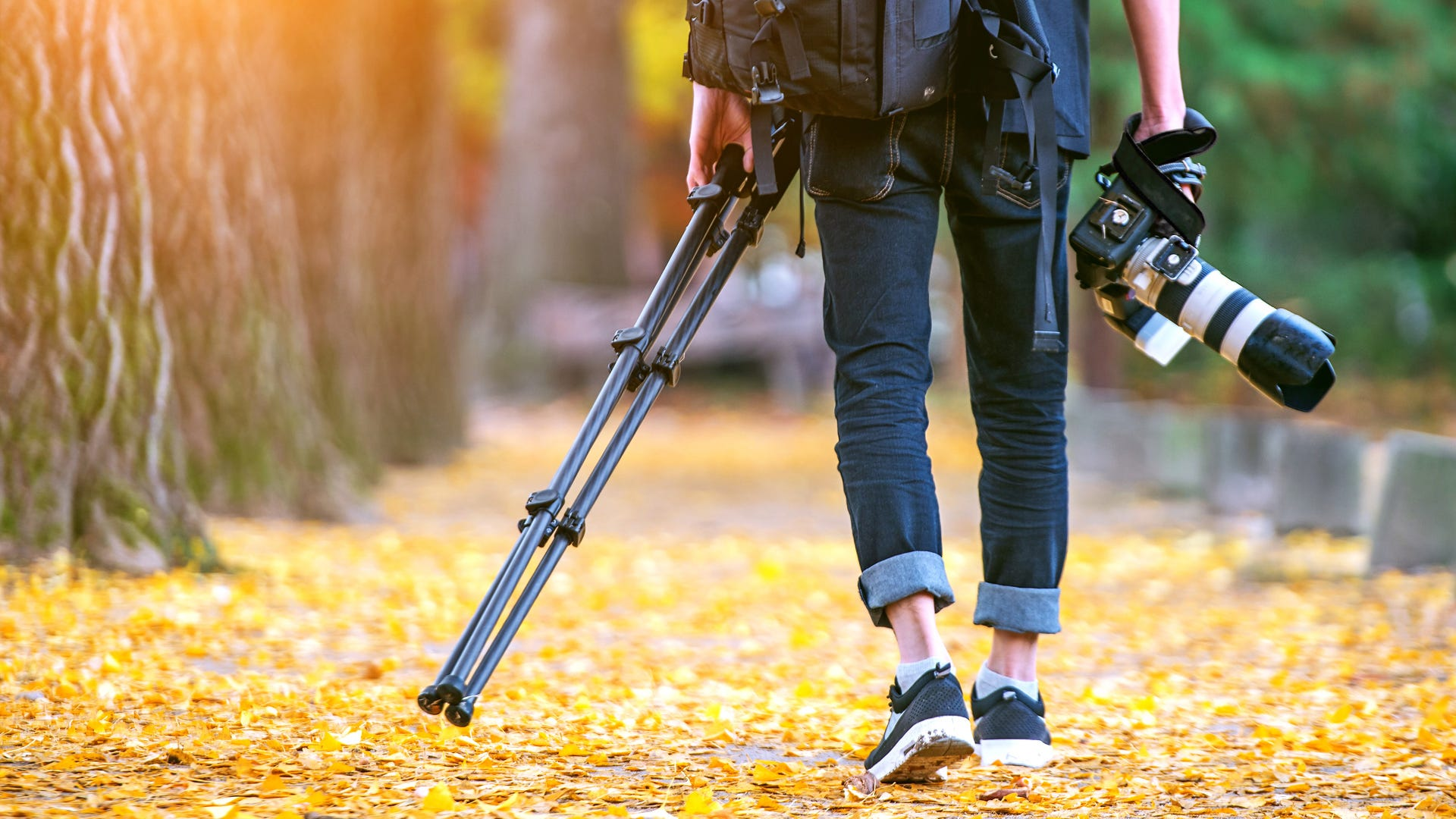 Tripods Choosing The Right Support For Your Investment Adorama