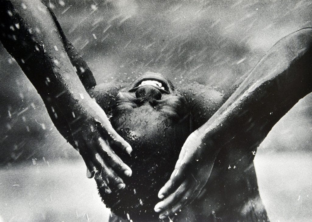 Pure joy photography from personal collection of john h white pulitzer prize photographer