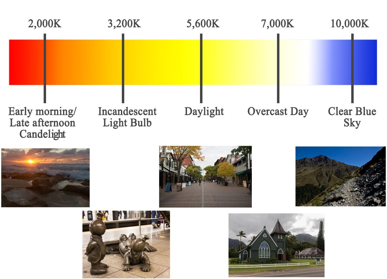 Lightroom 101 the basics part 1 alc color temperature can be controlled in two ways you can choose from the custom dropdown auto daylight cloudy shade tungsten etc or you can be more nvjuhfo Choice Image