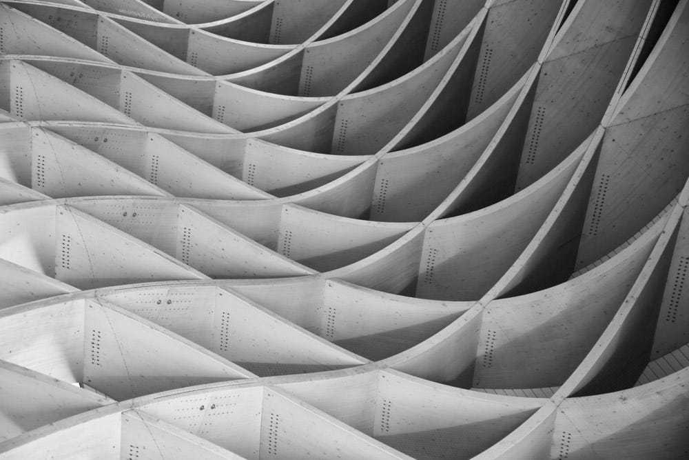 monochromatic abstract photo with curvy line patterns