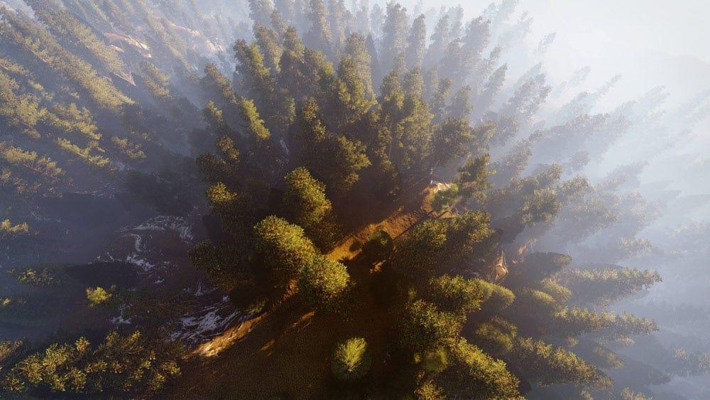 Drone photographie vue de dessus de forêt avec brouillard