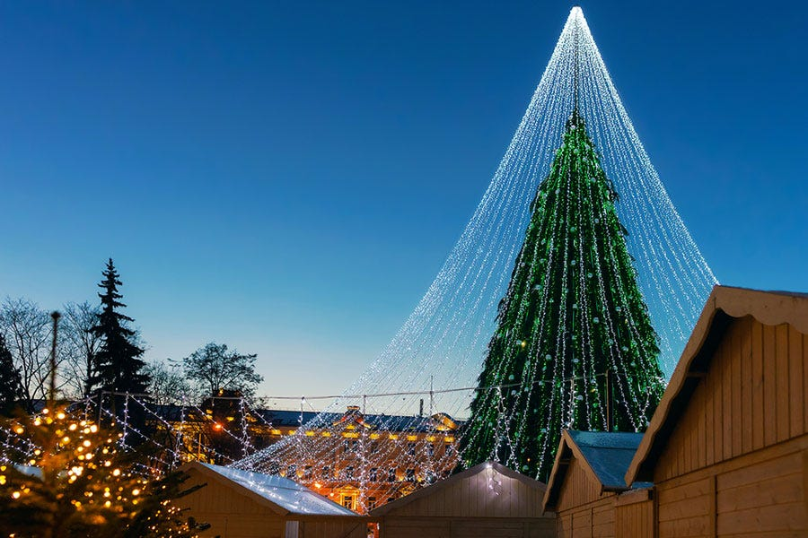 giant christmas tree with lights shot during dusk