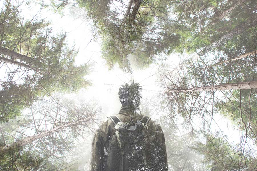 Double exposure of man and worm's eye view of misty forest