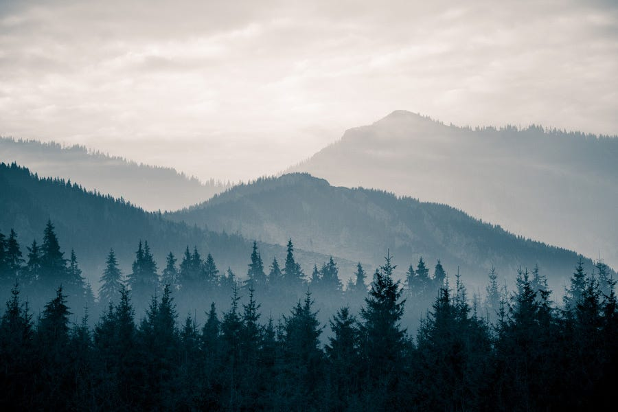 Monochromatic landscape shot showing tonal contrast and balance