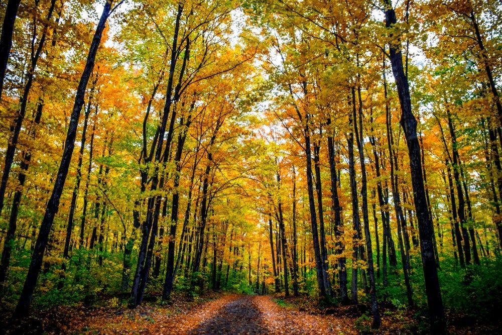 Basic Landscape Photography Tips Adorama Learning Center