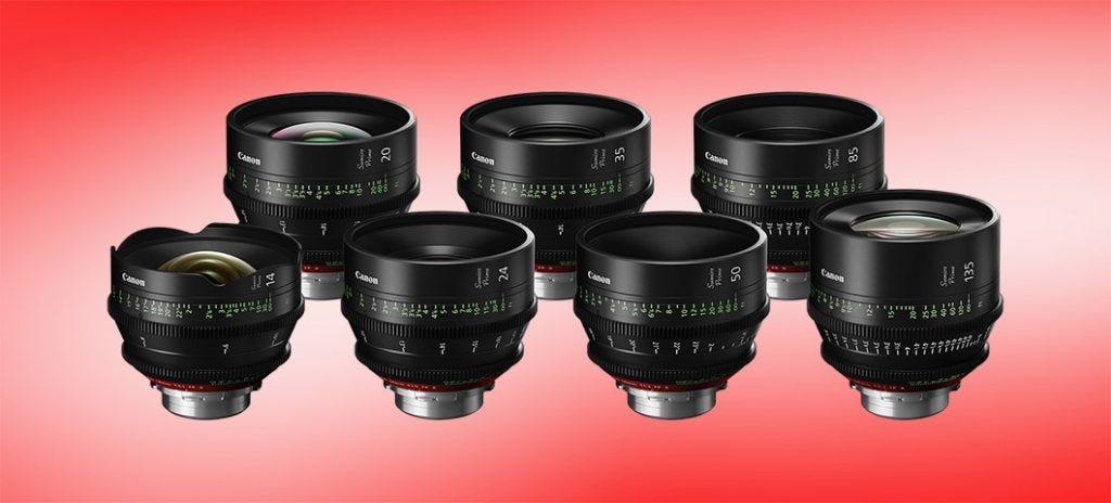 The Best Lenses for Nikon D750 Users