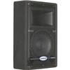"Samson SARS10MHD Resound HD 10"" Wedge Monitor Speaker SARS10MHD"