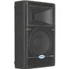 "Samson SARS12MHD Resound HD 12"" Wedge Monitor Speaker SARS12MHD"