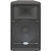 "Samson SARS15HD Resound 15"" 2-Way Passive Loud Speaker SARS15HD"
