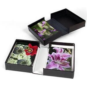 "Archival Methods Onyx 13x19x1-3/8"" Portfolio Box 11115"