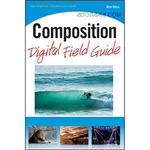 Wiley Publishing: Composition Digital Field Guide 9780470769096