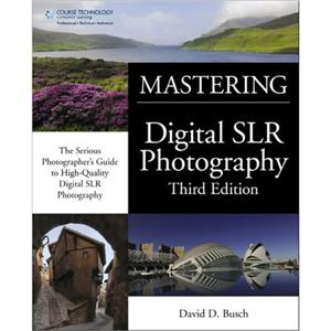 David Busch's Mastering Digital SLR Photography Book: Picture 1 regular