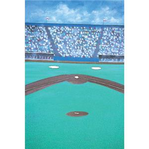 Studio Dynamics Sports Scenic Series 12' x 12' Muslin Background, Baseball.: Picture 1 regular