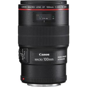 Canon 100mm F/2.8L: Picture 1 regular
