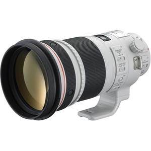 Canon 300mm F/2.8L: Picture 1 regular