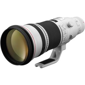 Canon 500mm F/4L: Picture 1 regular