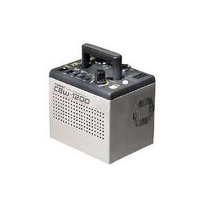 Comet CBW1200 Compact 1200 W/S Symmetrical and 1:2 Asymmetrical Power Pack: Picture 1 regular