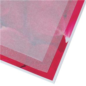 Adorama Acid Free Print Cover Tissue, 100-8.5x11 Sheets: Picture 1 regular