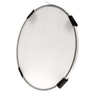 HoneyGrids P21 Profoto 25Deg Beauty Dish Grid, White: Picture 1 regular