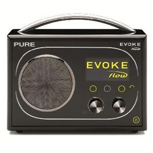 Pure Digital Technologies Evoke Flow Portable Internet and FM Radio VL-61416