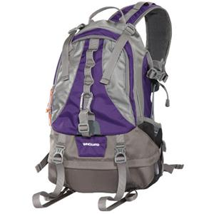 Vanguard KINRAY 43 Sling Bag, Purple/Sliver: Picture 1 regular