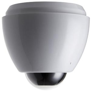 Y-cam EyeBall Dome IP Camera: Picture 1 regular