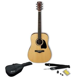 Ibanez IJD100S Jampack Dreadnought Solid Top Acoustic Guitar Kit