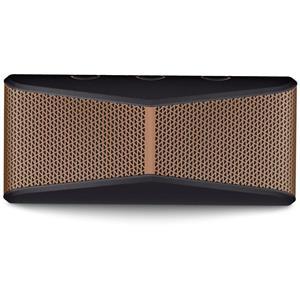 Logitech X300 Wireless Portable Speaker (Black)
