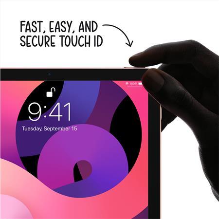 """Apple iPad Air 10.9"""", 64GB, Wi-Fi Only, 4th Gen 2020, iPadOS 14, Sky Blue  MYFQ2LL/A"""