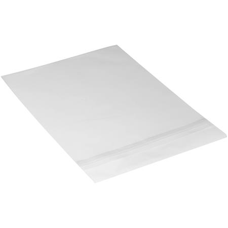 Archival Methods Crystal Clear Bags Picture 1 Regular