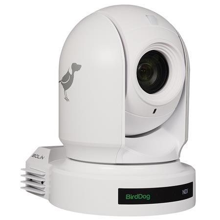BirdDog Eyes P200 1080P Full NDI PTZ Camera with Sony Sensor & HDMI/3G-SDI,  White