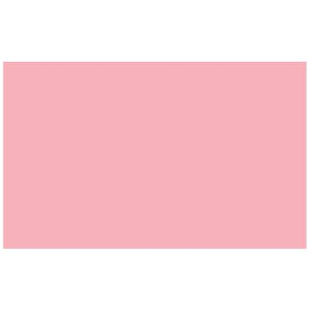 adorama seamless background paper pastel pink 17 11752 adorama adorama seamless background paper 53 wide x 12 yards pastel pink 17