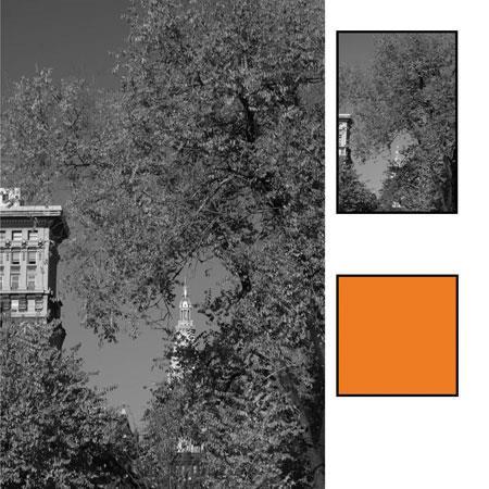 B + W : Picture 1 regular