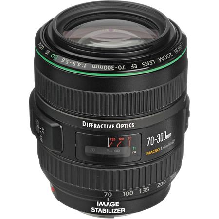 Canon 70-300mm f/4.5-5.6 DO IS: Picture 1 regular