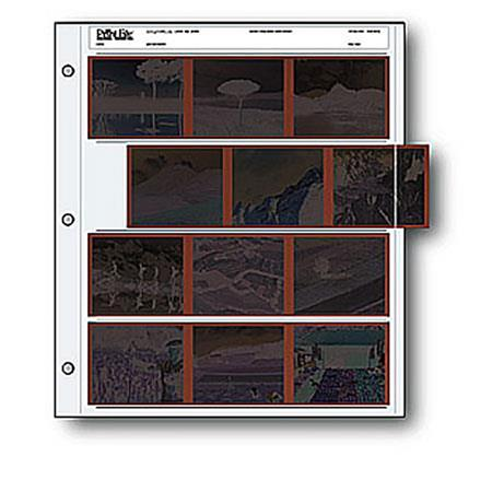 Print File : Picture 1 regular