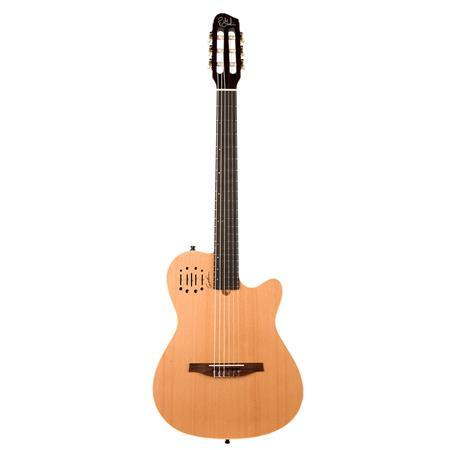 godin multiac nylon encore acoustic electric guitar natural semi gloss 035045. Black Bedroom Furniture Sets. Home Design Ideas