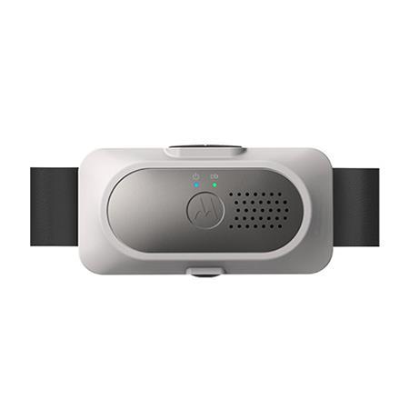 Motorola Dog Bark Collar Review